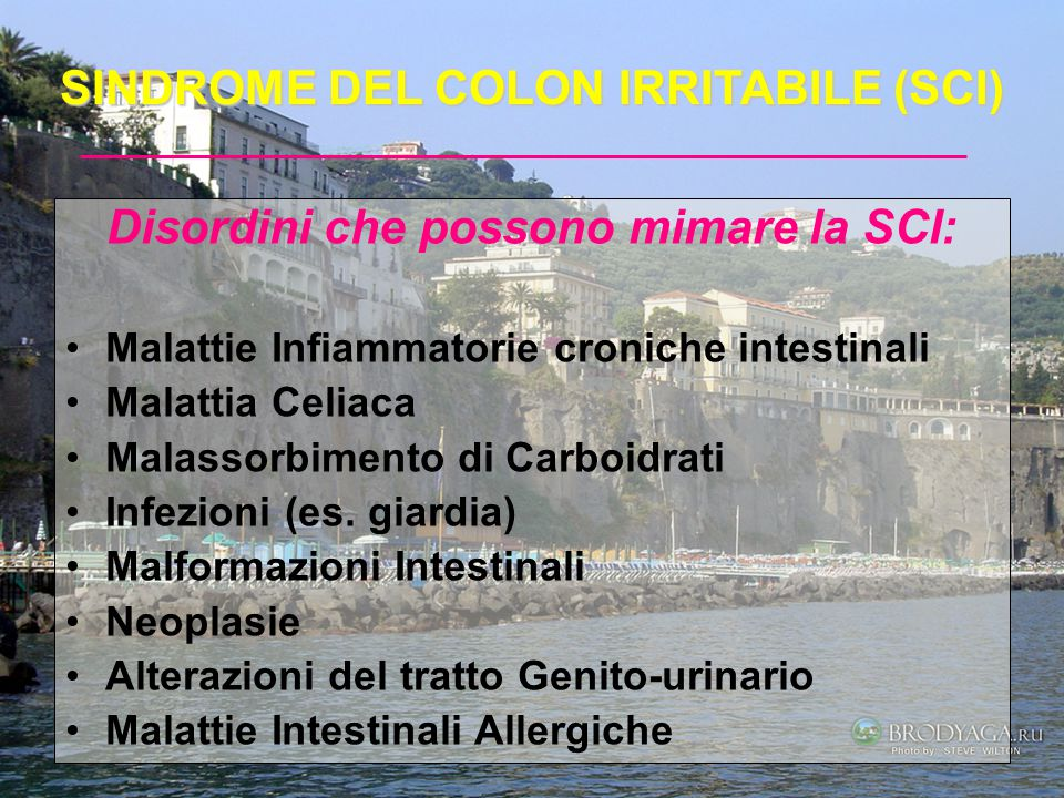 SINDROME DEL COLON IRRITABILE (SCI)