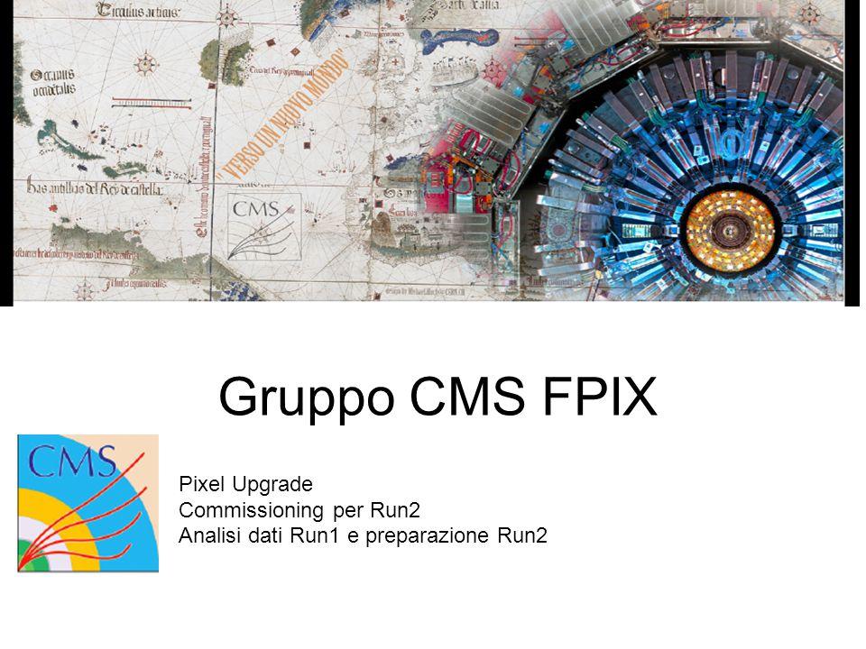 Gruppo CMS FPIX Pixel Upgrade