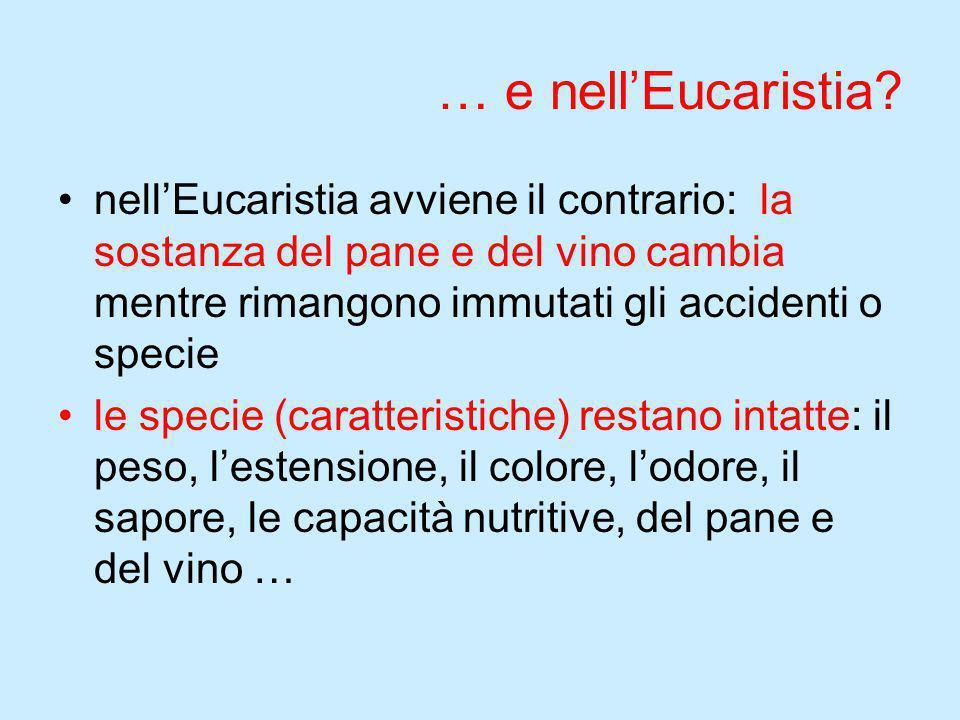 … e nell'Eucaristia nell'Eucaristia avviene il contrario: la sostanza del pane e del vino cambia mentre rimangono immutati gli accidenti o specie.