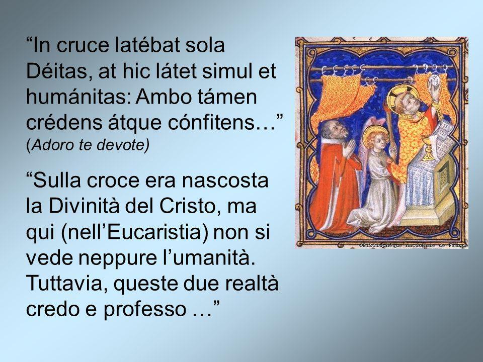In cruce latébat sola Déitas, at hic látet simul et humánitas: Ambo támen crédens átque cónfitens… (Adoro te devote)