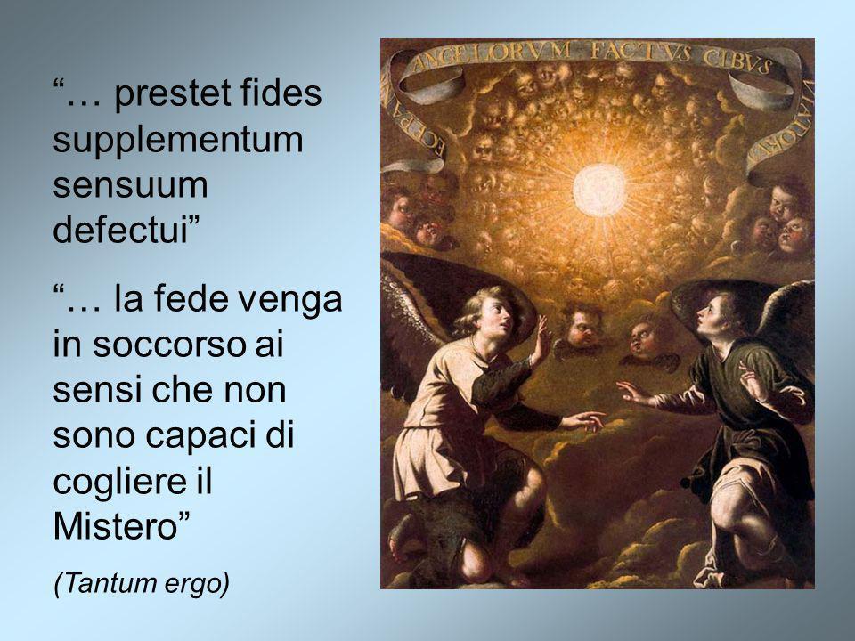 … prestet fides supplementum sensuum defectui