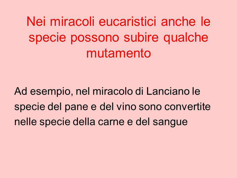 Nei miracoli eucaristici anche le specie possono subire qualche mutamento