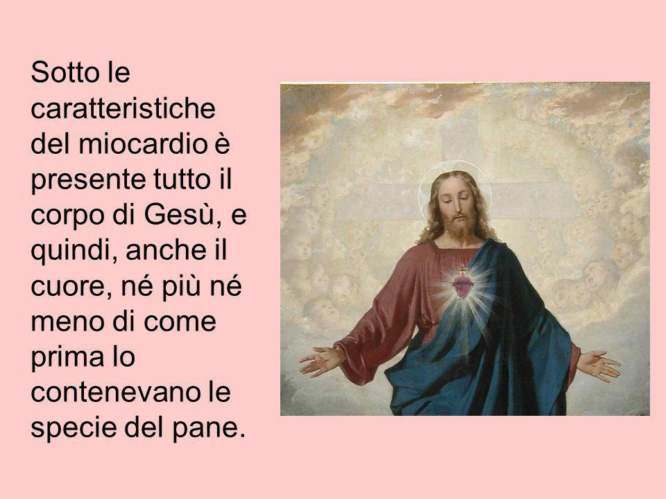 Sotto le caratteristiche del miocardio è presente tutto il corpo di Gesù, e quindi, anche il cuore, né più né meno di come prima lo contenevano le specie del pane.