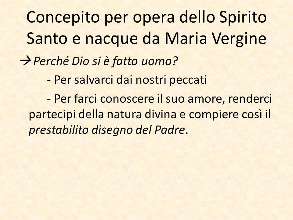 Concepito per opera dello Spirito Santo e nacque da Maria Vergine