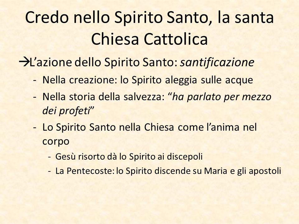 Credo nello Spirito Santo, la santa Chiesa Cattolica