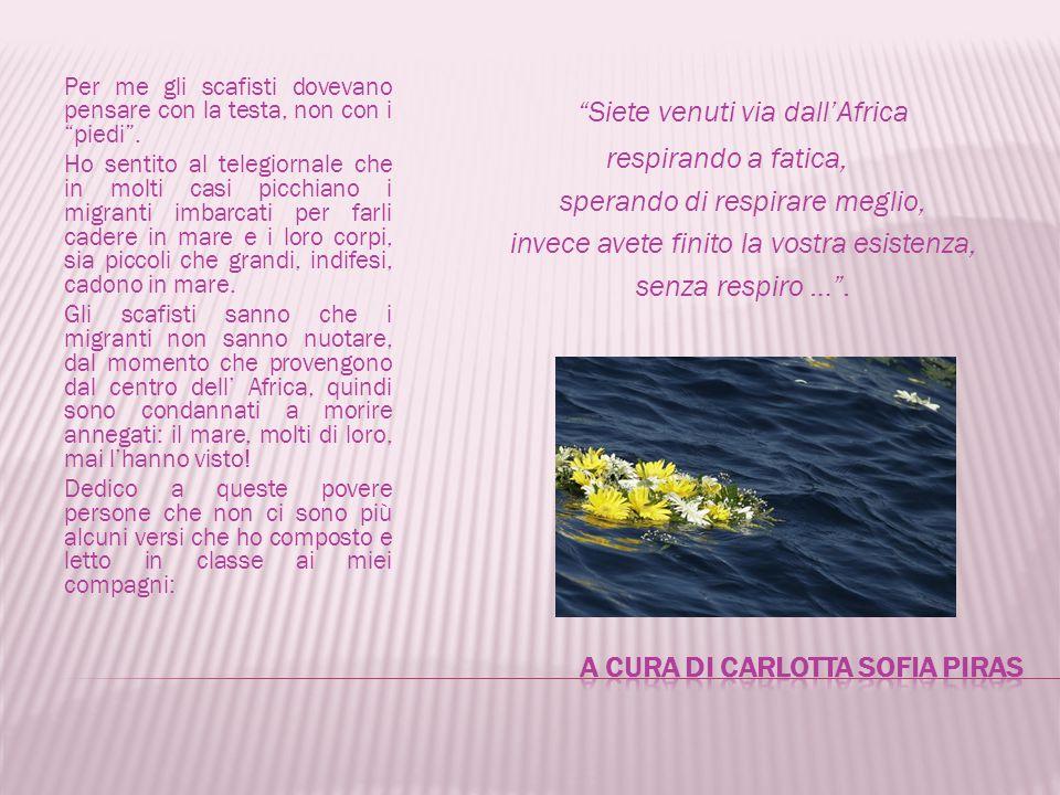 A cura di Carlotta SOFIA PIRAS