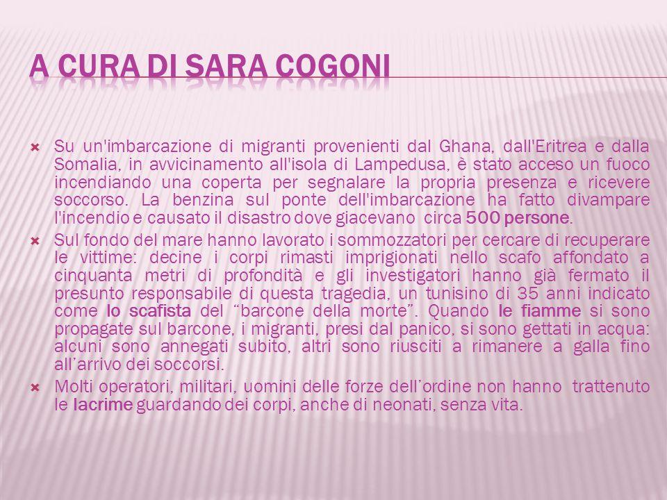 A cura di Sara cogoni