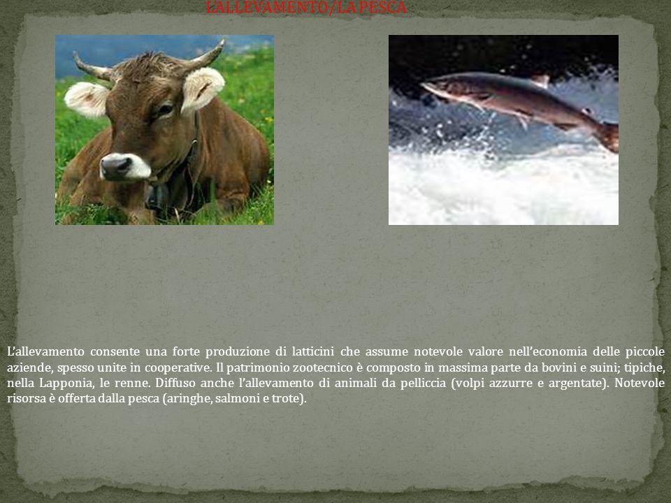 L'ALLEVAMENTO/LA PESCA