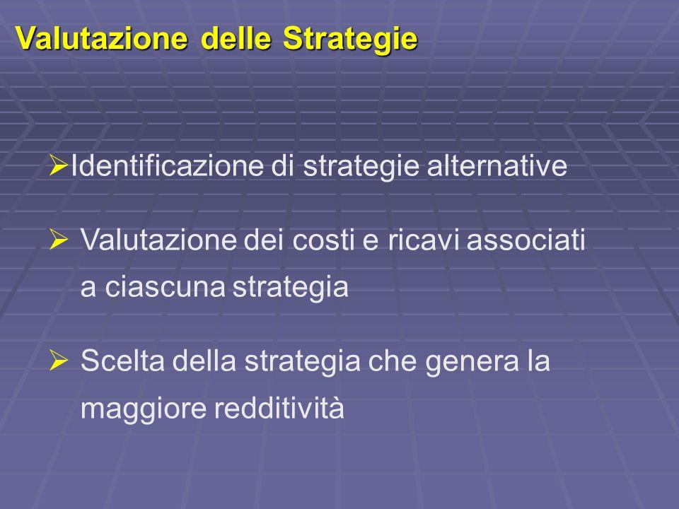 Valutazione delle Strategie