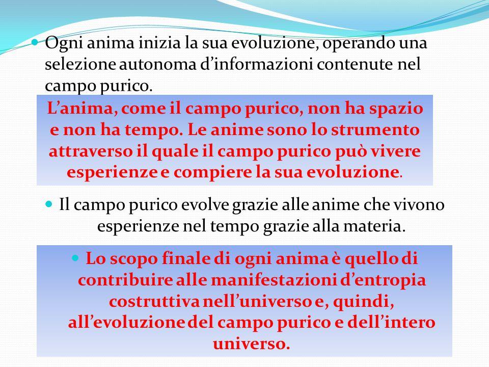 Ogni anima inizia la sua evoluzione, operando una selezione autonoma d'informazioni contenute nel campo purico.