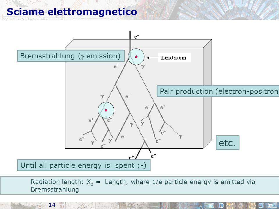 Sciame elettromagnetico
