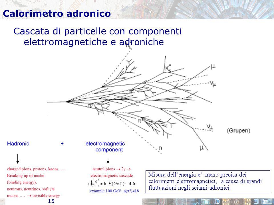 Cascata di particelle con componenti elettromagnetiche e adroniche