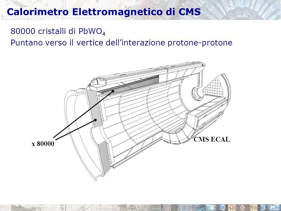 Calorimetro Elettromagnetico di CMS