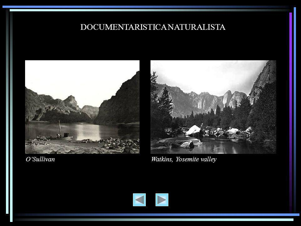 DOCUMENTARISTICA NATURALISTA