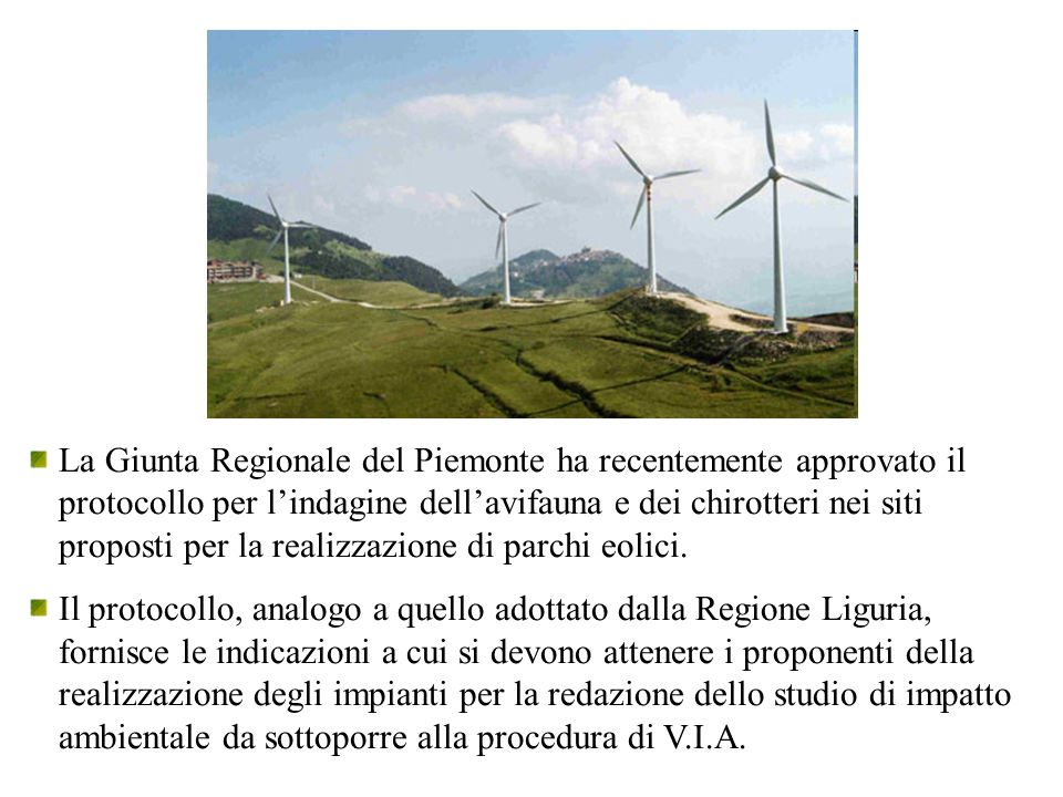 La Giunta Regionale del Piemonte ha recentemente approvato il protocollo per l'indagine dell'avifauna e dei chirotteri nei siti proposti per la realizzazione di parchi eolici.