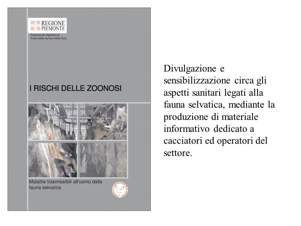 Divulgazione e sensibilizzazione circa gli aspetti sanitari legati alla fauna selvatica, mediante la produzione di materiale informativo dedicato a cacciatori ed operatori del settore.