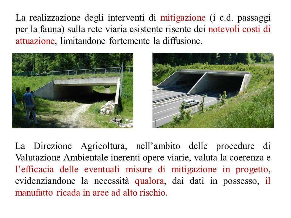 La realizzazione degli interventi di mitigazione (i c. d