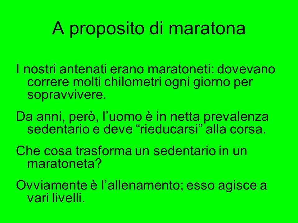 A proposito di maratona
