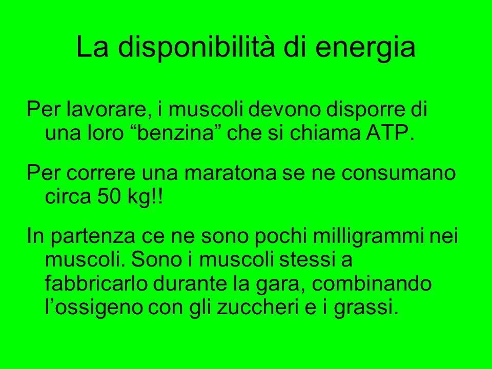 La disponibilità di energia