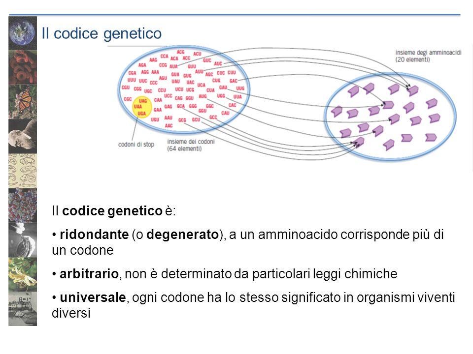 Il codice genetico Il codice genetico è: