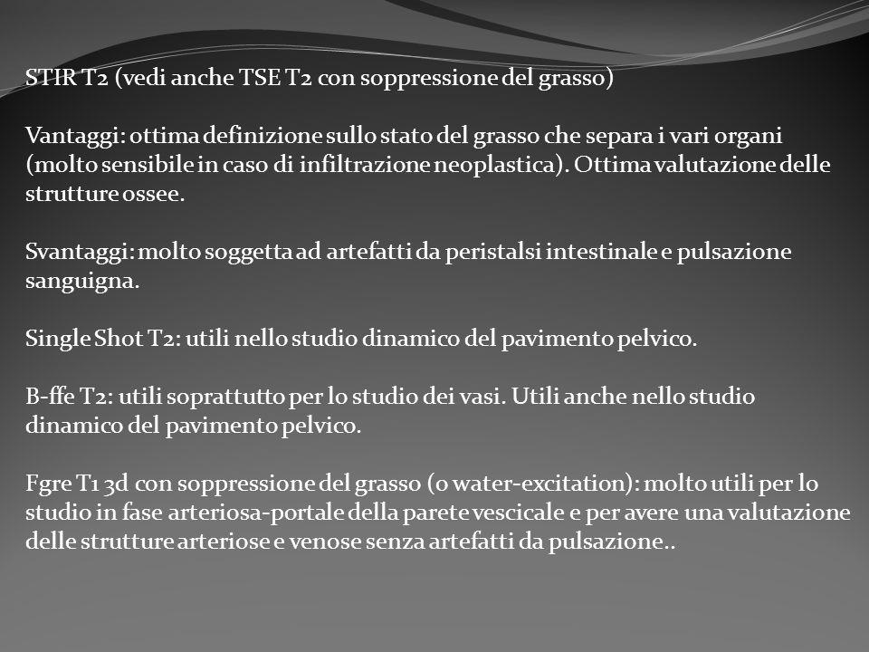 STIR T2 (vedi anche TSE T2 con soppressione del grasso)