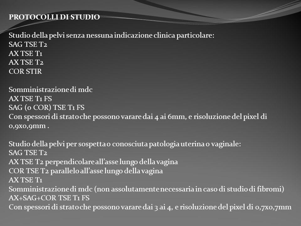 PROTOCOLLI DI STUDIO Studio della pelvi senza nessuna indicazione clinica particolare: SAG TSE T2.