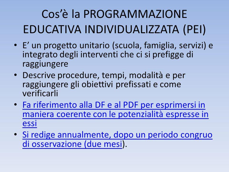 Cos'è la PROGRAMMAZIONE EDUCATIVA INDIVIDUALIZZATA (PEI)