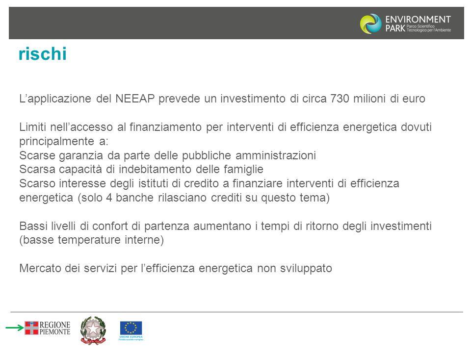 rischi L'applicazione del NEEAP prevede un investimento di circa 730 milioni di euro.