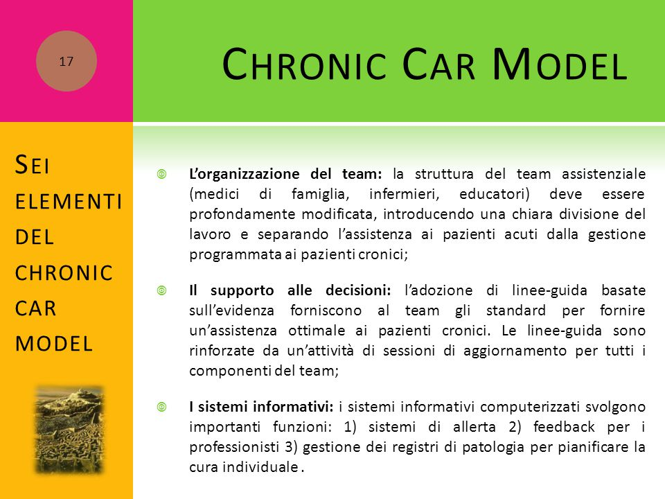 Chronic Car Model Sei elementi del chronic car model
