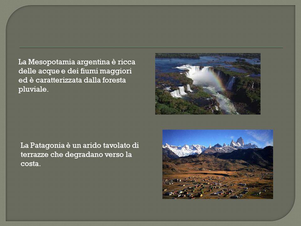 La Mesopotamia argentina è ricca delle acque e dei fiumi maggiori ed è caratterizzata dalla foresta pluviale.