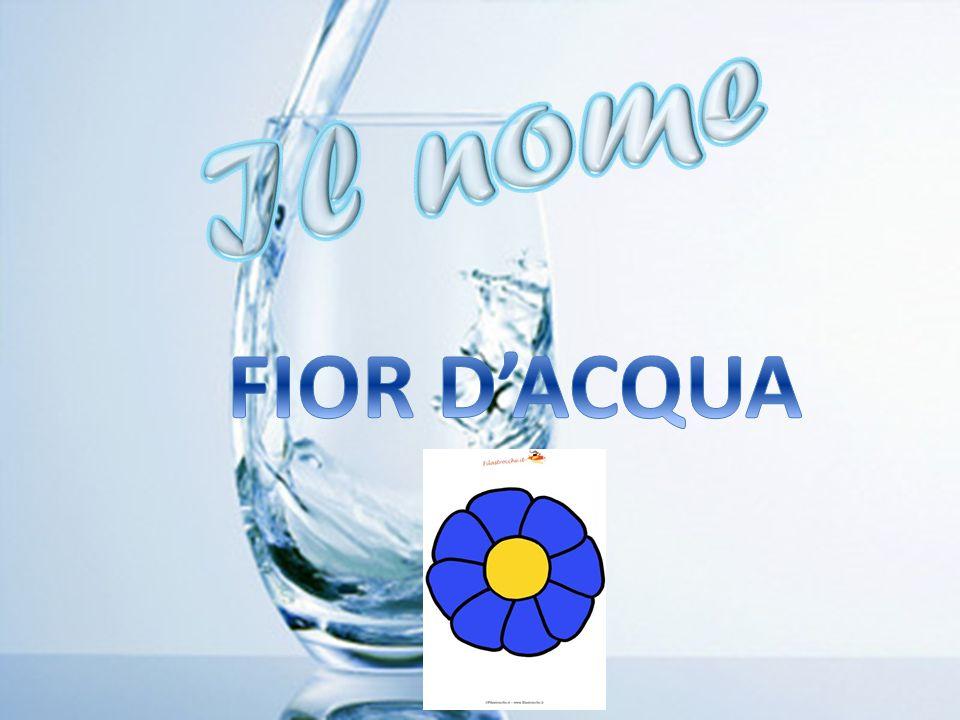 FIOR D'ACQUA