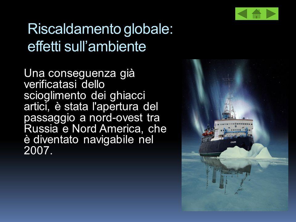 Riscaldamento globale: effetti sull'ambiente