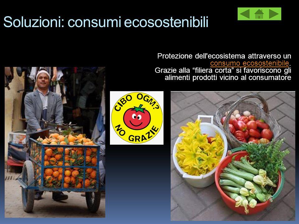 Soluzioni: consumi ecosostenibili