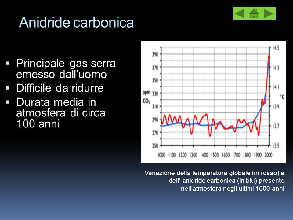 Anidride carbonica Principale gas serra emesso dall'uomo