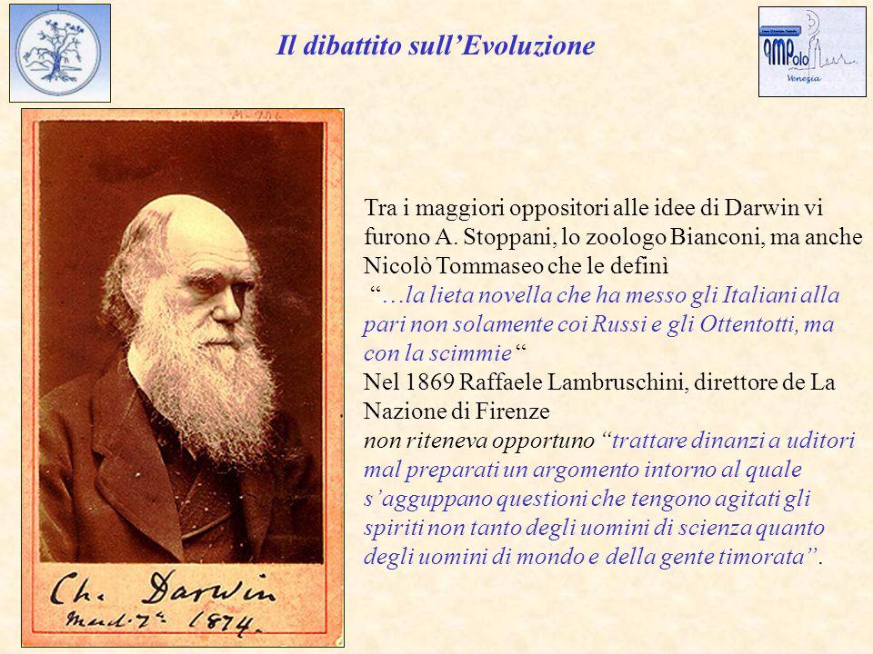Il dibattito sull'Evoluzione