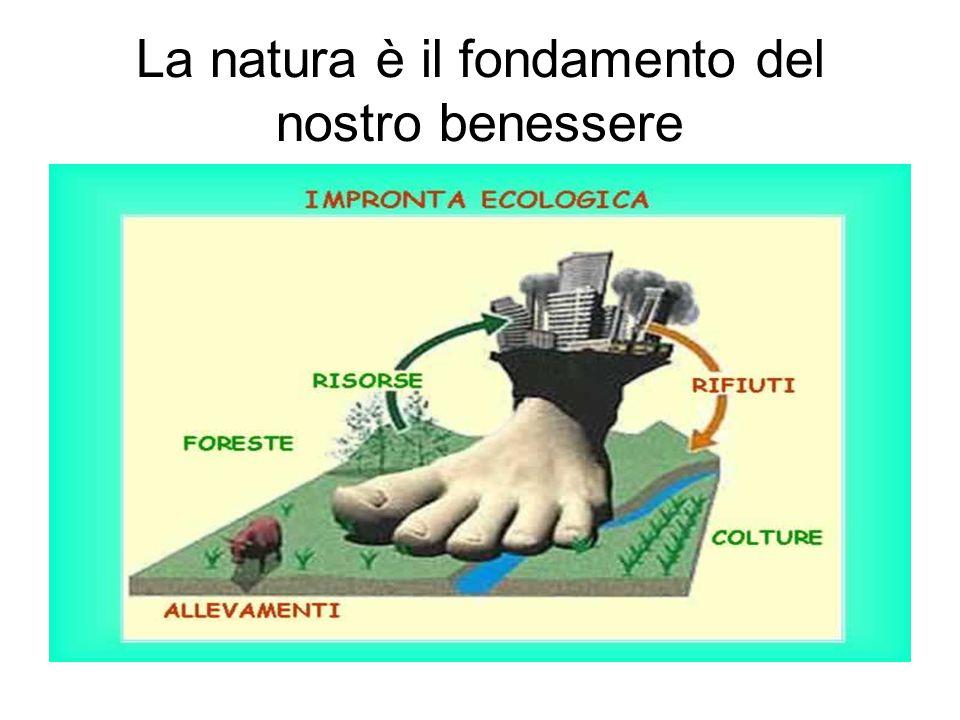 La natura è il fondamento del nostro benessere