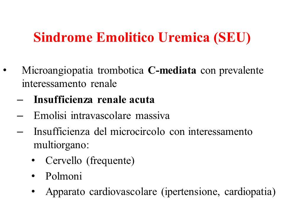 Sindrome Emolitico Uremica (SEU)