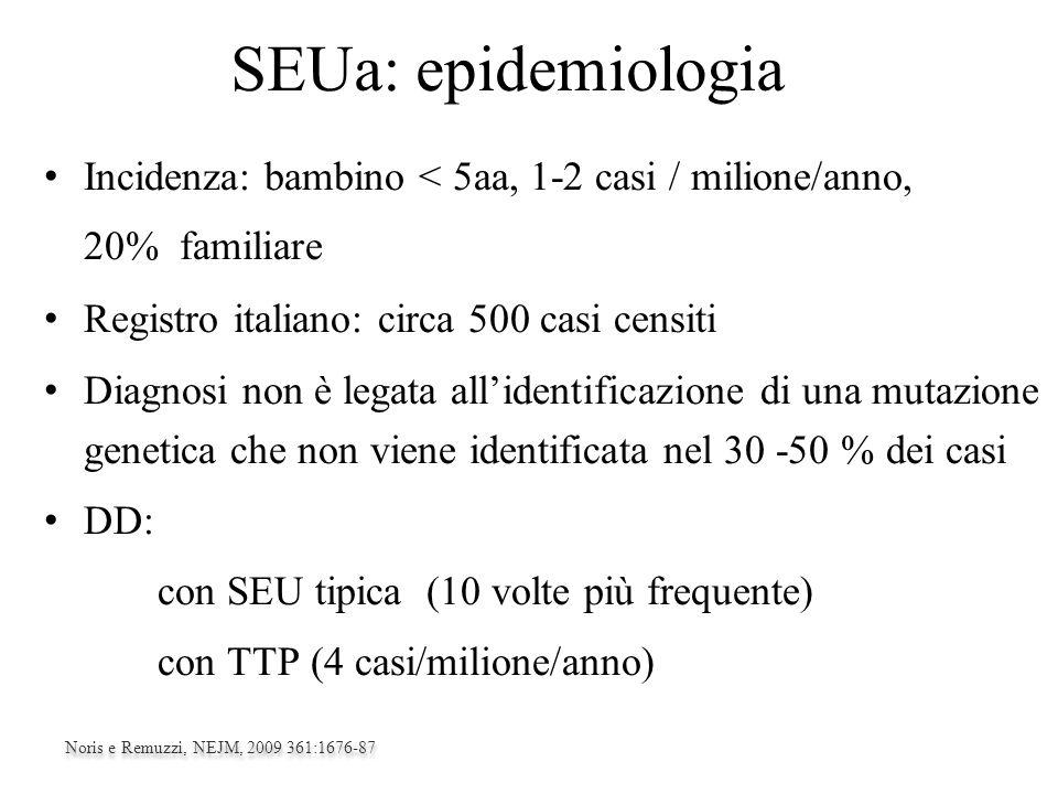 SEUa: epidemiologia Incidenza: bambino < 5aa, 1-2 casi / milione/anno, 20% familiare.