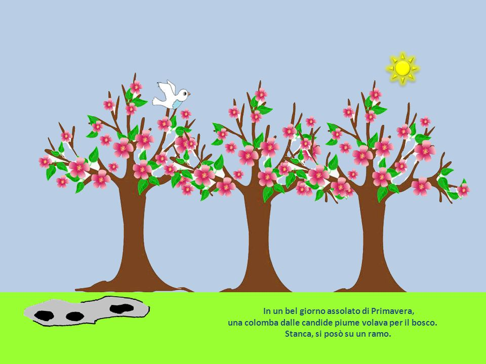 In un bel giorno assolato di Primavera, una colomba dalle candide piume volava per il bosco.