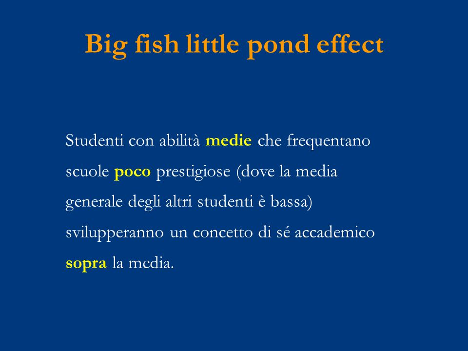 Big fish little pond effect