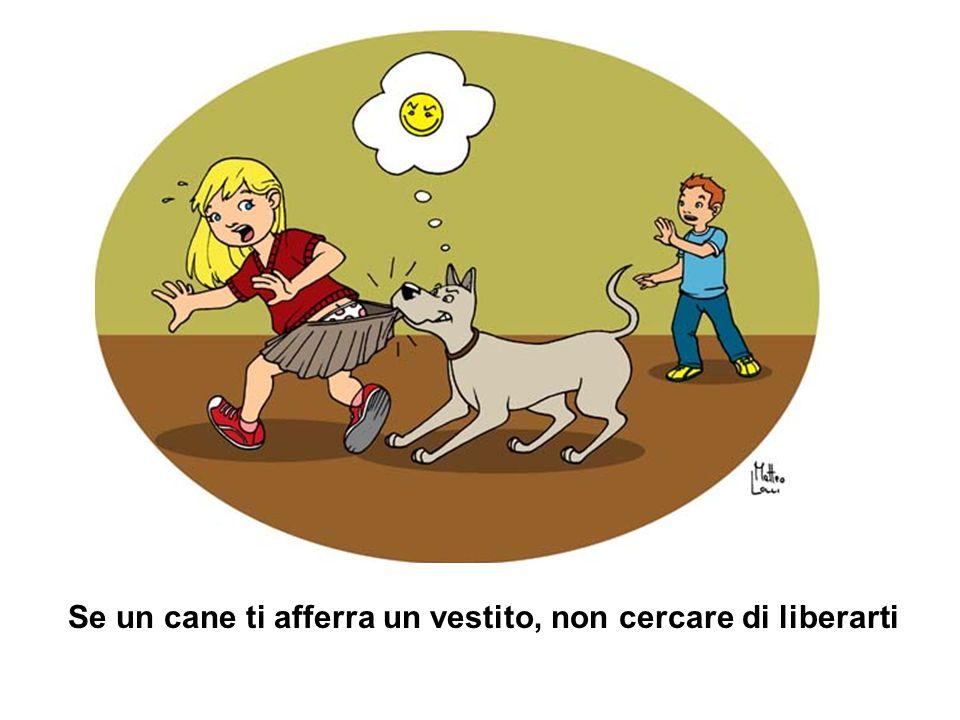 Se un cane ti afferra un vestito, non cercare di liberarti.