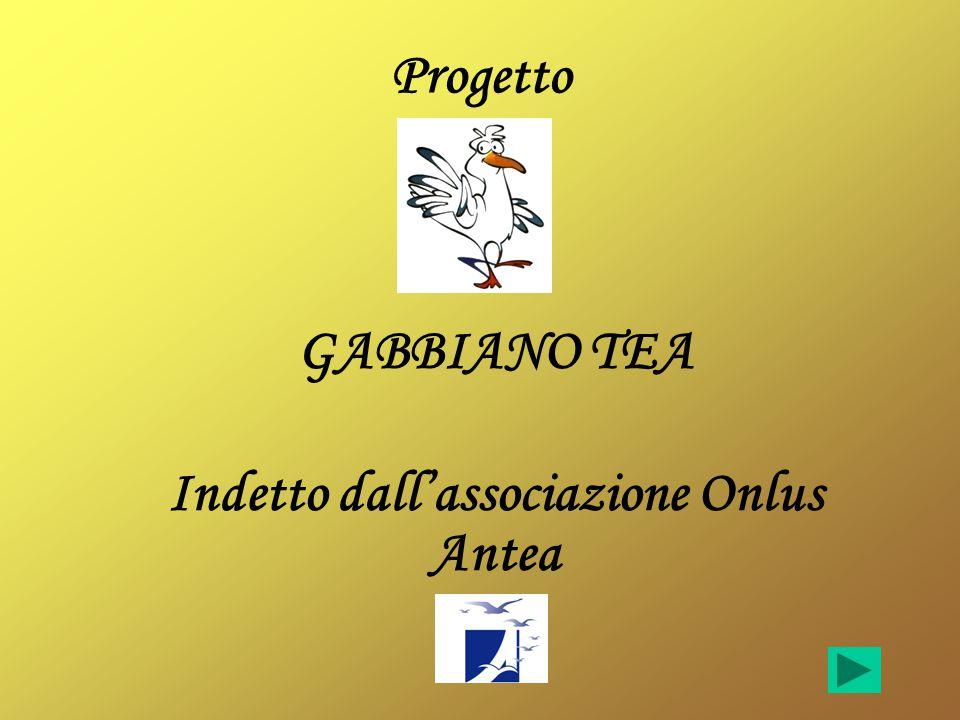 GABBIANO TEA Indetto dall'associazione Onlus Antea