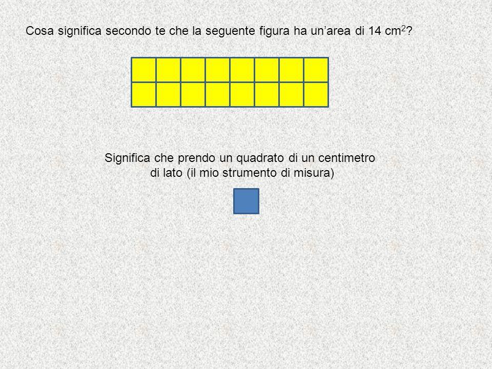 Cosa significa secondo te che la seguente figura ha un'area di 14 cm2