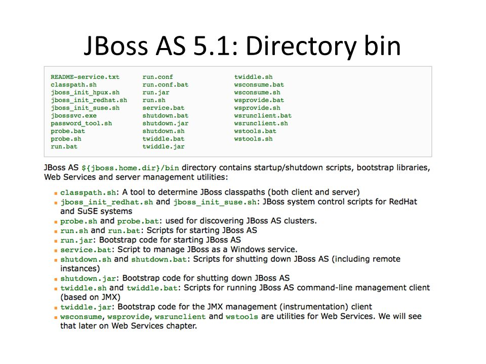 JBoss AS 5.1: Directory bin