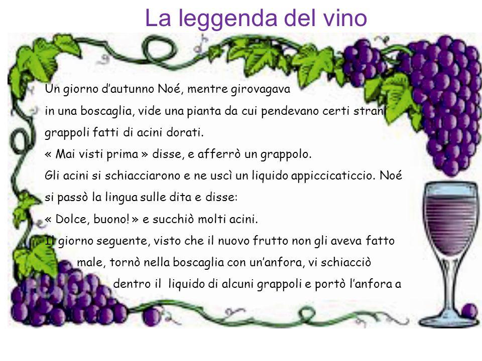 La leggenda del vino Un giorno d'autunno Noé, mentre girovagava