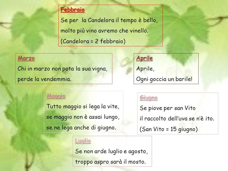 Febbraio Se per la Candelora il tempo è bello, molto più vino avremo che vinello. (Candelora = 2 febbraio)