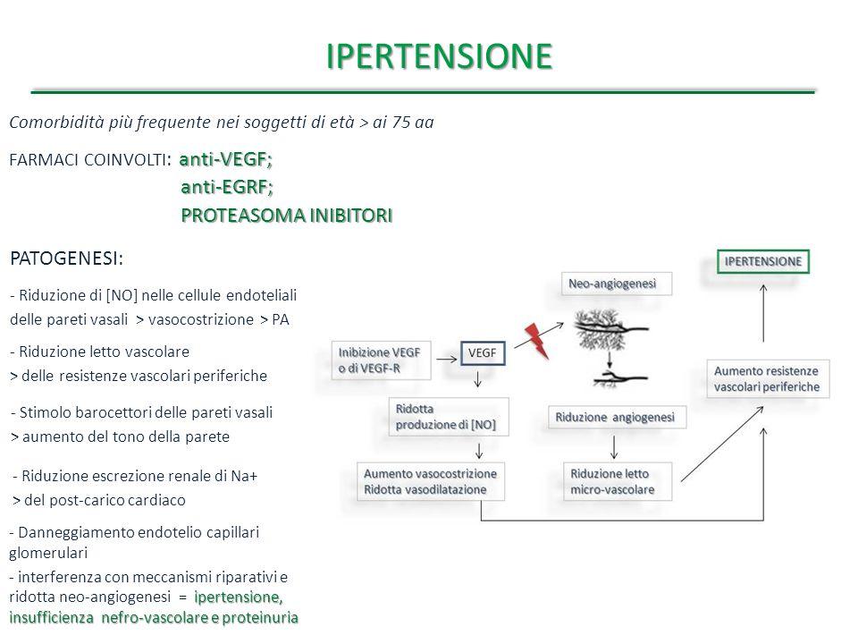 IPERTENSIONE anti-EGRF; PROTEASOMA INIBITORI PATOGENESI: