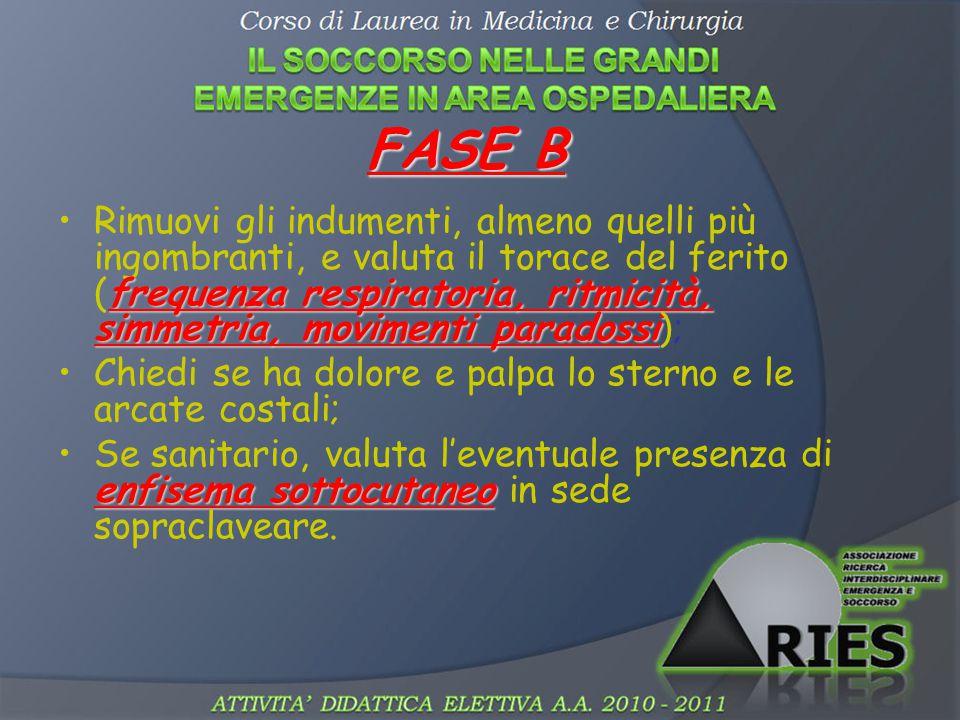 FASE B