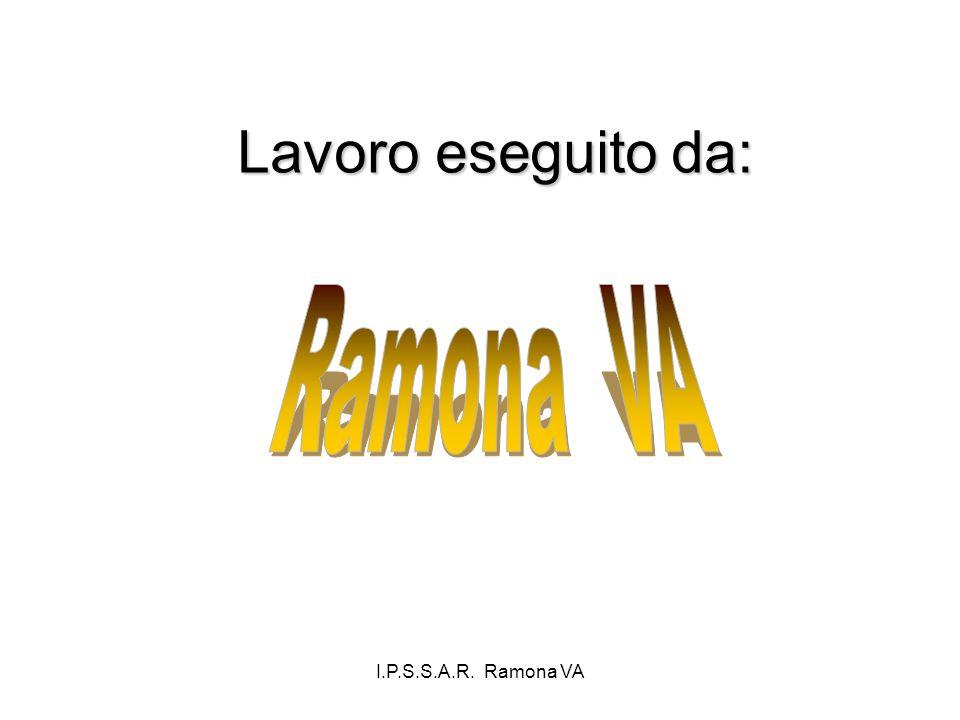 Lavoro eseguito da: Ramona VA I.P.S.S.A.R. Ramona VA