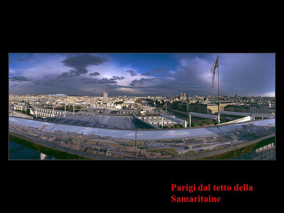 Parigi dal tetto della Samaritaine